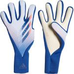 Férfi Kék adidas Kapuskesztyűk