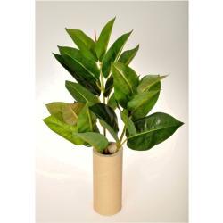 Ficus Elastica művirág, 45 cm