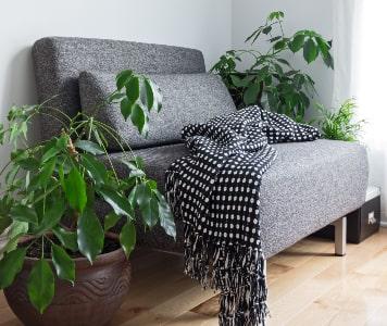 Szürke fotel növényekkel és fekete-fehér pöttyös takaróval